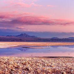 O entardecer no Salar de Atacama foi um dos mais lindos que assistimos durante nossa viagem ao Atacama. E com direito a flamingos! Consegue ver alguns nesta foto? Fizemos o passeio com a @aylluatacama e contamos tudo hoje no blog. Acesse http://ift.tt/1ic9Rtc