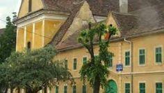 Imagini pentru biserica terezian sibiu Romania, Sky, Plants, Heaven, Plant, Planting, Planets