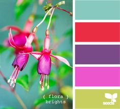 {  flora  }  brights - color inspiration