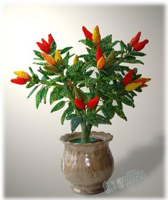Hot Pepper Plant Перчик-огонек