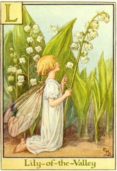 Cicely Mary Barker, Lily Of The Valley Flowers, Fairy Pictures, Vintage Fairies, Beautiful Fairies, Flower Fairies, Fairy Land, Illustrators, Fantasy Art