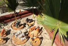 "Sandpit safari at St Helens District High School Kindergarten ("",)"