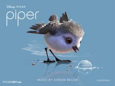 "Watch the Full ""Piper"" Short on Disney Movies Anywhere (& More 'Finding Dory' Videos) October 4 - 17 for Free 