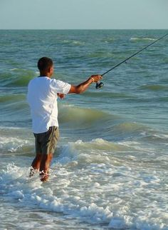 Bait to Use for Surf Fishing