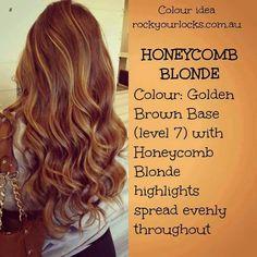 🍯🐝 Honeycomb Blonde 🐝🍯