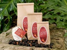 Laundry Tree Soap Nuts Review - Organic Laundry Detergent