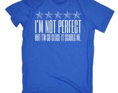 Unisex Perfect Hoodie - I'm Not Perfect But I'm So Close It Scares Me (XL - Royal) T-Shirt  / t shirt top unisex women's funny man tee gym