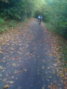 Virginia Creeper Bike Trail--a must-do ride for everyone!
