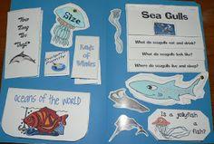 Ocean Lapbook Study (used lots of various lapbooks and combined them); find printables at Homeschool Share: http://www.homeschoolshare.com/connections__oceans.php
