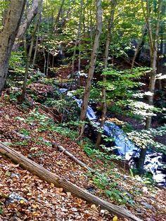 Worthington State Park - Delaware Water Gap - New Jersey