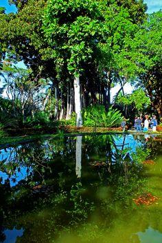 De visita en el Jardín Botánico de Puerto de La Cruz. Tenerife. Islas Canarias…