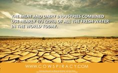 save water, go vegan.