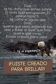 Fuiste creado para brillar!!! A volar Dios ha dicho!!!!! Bible Guide, Quotes To Live By, Life Quotes, God's Heart, God Loves You, Dear Lord, Pretty Words, Bible Verses Quotes, Spiritual Inspiration