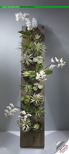 Tom Simmons AIFD This vertical garden is a fabulous gift for mom with dendrobium orchid plants, succulents and succulents and tillandsias. Design by Tom Simmons AIFD. Photography by Ron Derhacopian.
