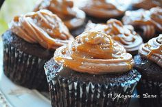 Chocolate caramel sea salt cupcakes | 11 Magnolia Lane