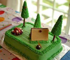 Camping Birthday Cake. . .what do you think? @Suzie Solmon for scout centerpieces