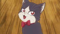 Subaru, Anime Animals, Cat Wallpaper, Best Waifu, Roommate, Manga, Fantasy Creatures, Shoujo, Neko