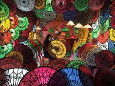 Burmese Girl with Parasols.