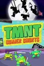 Found a working link to WATCH FREE TV Series Tmnt Summer Shorts .... here is the link guys https://watchfreemovies.nl/tvshows/tmnt-summer-shorts