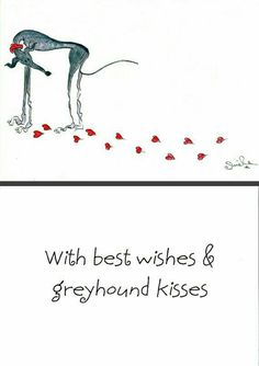 Best wishes & Greyhound kisses