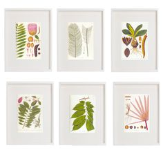 Cheer up your walls this winter with these beautiful botanicalart prints from poppytalkhandmade. Simply download, print, frame and…
