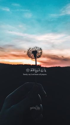"""New Inspirational Quotes """"Indeed, My Lord is surely hearing for the prayers! Quran Quotes Love, Beautiful Quran Quotes, Quotes Arabic, Quran Quotes Inspirational, Hadith Quotes, Allah Quotes, Islamic Love Quotes, Muslim Quotes, Quran Sayings"""