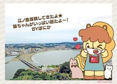 #PDESIGN #Animal #pony #ponika #japan #photo #sightseeing #enoshima #cat