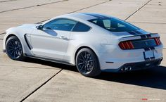 2015 Shelby GT350 Mustang