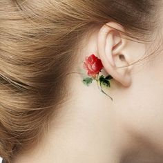 Watercolor rose tattoo behind the ear. This is very pretty. I'd probably do a more vintage looking flower design of an apple blossom.