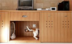 Part I- Designing pet accommodations into your home: a kitchen island with alcoves for food and water dishes, drawers for leashes and treats, and roll-out storage bins to hold bulk kibble.