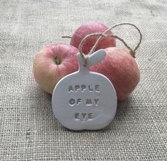 """Hand crafted clay """"Apple of my eye"""" decoration Teacher Cards, Teacher Gifts, Apple Decorations, Thank You Gifts, My Eyes, Clay, Handmade, Crafts, Thank You Presents"""