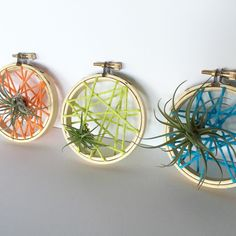 New item for the shop!  Air plant in string art embroidery hoop makes for a fun, colorful way to display air plants anywhere in your home.