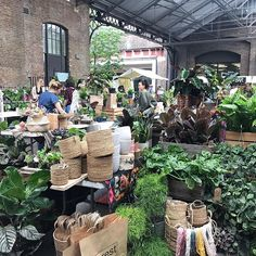 SAVE THE DATE We are so excited to be bringing back to the brilliant in Kings Cross for three plant-packed days Friday - Sunday May! Trader application dates to be announced shortly. Things To Do In London, All Things, London Market, Green Rooms, Food Festival, Plant Decor, Save The Date, House Plants, Canopy