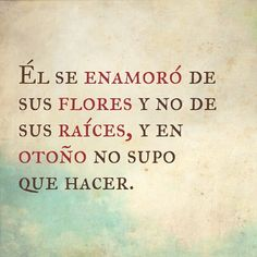 """52 Me gusta, 2 comentarios - Milca Peguero (@milcapeguero) en Instagram: """"Jaaaay chichí ---> Él se enamoró de sus flores y no de sus raíces, y en otoño no supo que hacer...…"""""""