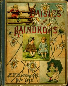 Daisies And Raindrops (1) From: University Of Florida Digital Collection, please visit