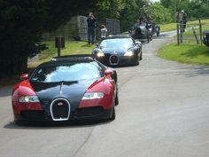 #Two Bugatti Veyron's  #  Like, RePin, Share - Thnx :)