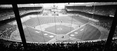 Polo Grounds - history, photos and more of the New York Giants former ballpark New York Giants Football, Giants Baseball, Baseball Park, Baseball Players, Baseball Stuff, New York Stadium, Braves Game, Polo Grounds, Baseball Training