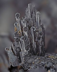 Pyrolusite from Clara Mine, Rankach valley, Oberwolfach, Wolfach, Black Forest, Baden-Württemberg, Germany