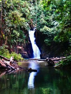 Paria Waterfall, North Coast,  Trinidad