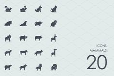 Mammals icons by Palau on @creativemarket