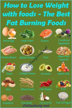 to Lose Weight with foods – The Best Fat Burning Foods - Infographic - Onl How to Lose Weight with foods – The Best Fat Burning Foods - Infographic - Onl. -How to Lose Weight with foods – The Best Fat Burning Foods - Infographic - Onl. Quick Weight Loss Tips, How To Lose Weight Fast, Losing Weight, Lose Fat, Weight Loss Foods, Reduce Weight, Weight Gain, Diet And Nutrition, Nutrition Shakes