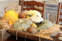 Fall - pumpkins, gourds, in dough bowl with grass