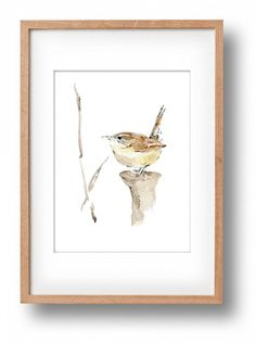 Carolina Wren No. 2 art print Wren watercolor by TheJoyofColor