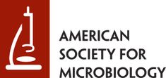 Low Temperature Decreases the Phylogenetic Diversity of Ammonia-Oxidizing Archaea and Bacteria in Aquarium Biofiltration Systems | Applied and Environmental Microbiology American Society For Microbiology, Uni, Amino Acid Sequence, In Vivo, Life Science, Environmental Microbiology, Japanese Encephalitis, Lactobacillus Reuteri, Aquarium Maintenance