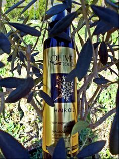 #hairoil #haircare Hair Oil, Energy Drinks, Red Bull, Olive Oil, Moisturizer, Hair Care, Beverages, Greek, Organic