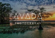 Avada Website Builder For WordPress & WooCommerce Tema Wordpress, Web Responsive, Professional Photography, Lorem Ipsum, In This Moment, Things To Sell, Madrid, Internet, Inspiration