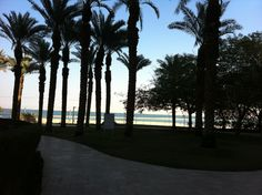 Le meridien hotel Dead sea, Ein Boqeq, tours and travel in Israel, Explore israel and find amazing views  Private tour guide in Israel