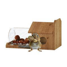 Handmade Cedar Wood Squirrel Feeder Without Jar