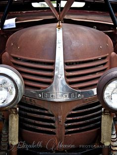Vintage Trucks Dear Rust: you can't be the star on this Board; perhaps a supportive role? Old Dodge Trucks, Pickup Trucks, Dodge Pickup, Pompe A Essence, Rust In Peace, Rusty Cars, Abandoned Cars, Rat Rods, Vintage Trucks