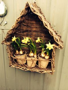 House Shandow Box Basket